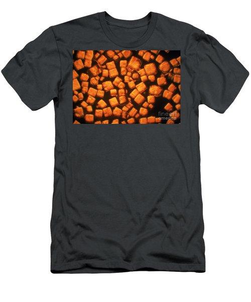 Kitchen Salt Men's T-Shirt (Athletic Fit)