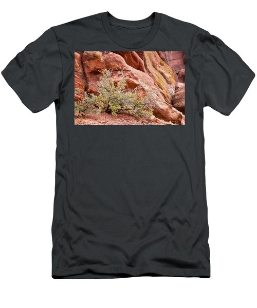 Life At Red Rocks Men's T-Shirt (Athletic Fit)