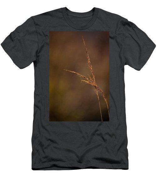 Little Bluestem On The Prairie Men's T-Shirt (Athletic Fit)