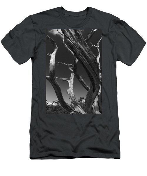 Men's T-Shirt (Slim Fit) featuring the photograph Lone Tree by David Gleeson