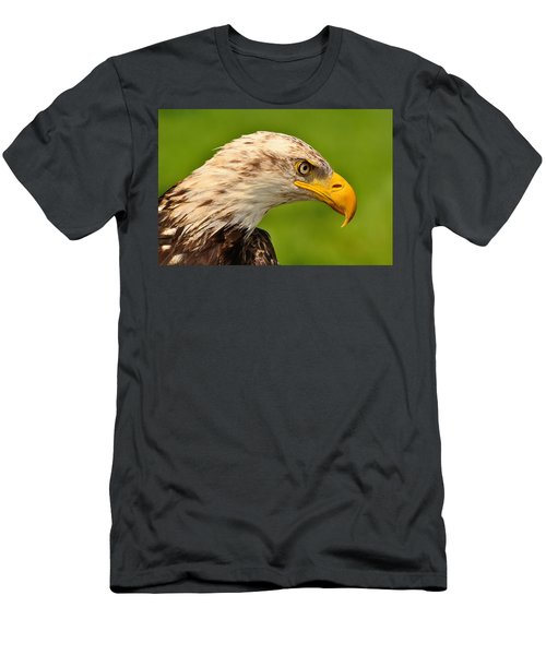 Lord Of The Wings Men's T-Shirt (Athletic Fit)
