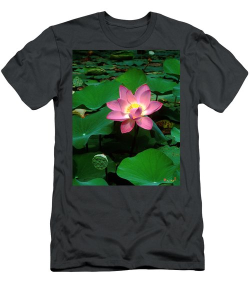 Lotus Flower And Capsule 24a Men's T-Shirt (Athletic Fit)