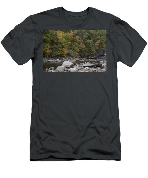 Loyalsock Creek Worlds End State Park Men's T-Shirt (Athletic Fit)