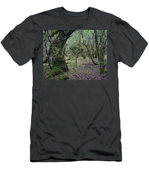 Men's T-Shirt (Slim Fit) featuring the photograph Magical Forest by Hugh Smith