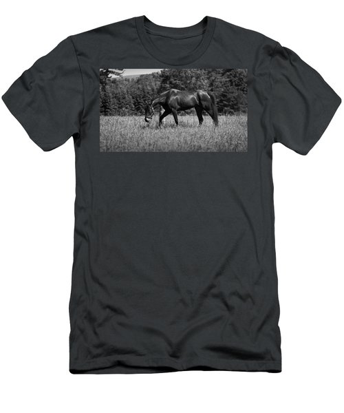 Men's T-Shirt (Slim Fit) featuring the photograph Mare In Field by Davandra Cribbie