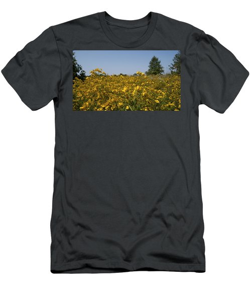 Meadow At Terapin Park Men's T-Shirt (Athletic Fit)