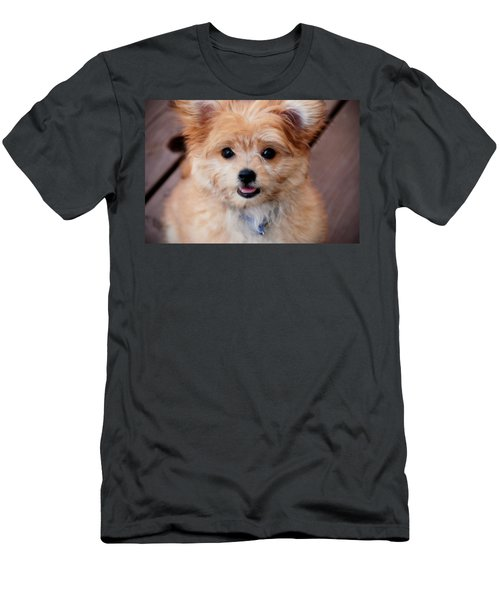 Men's T-Shirt (Athletic Fit) featuring the photograph Mi-ki Puppy by Angie Tirado