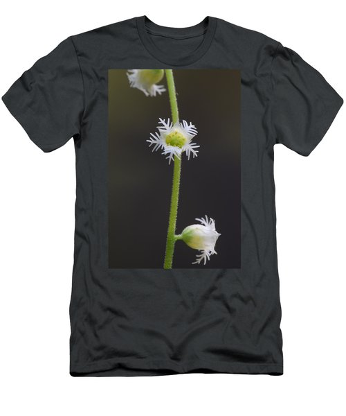 Miterwort Flowers Men's T-Shirt (Athletic Fit)