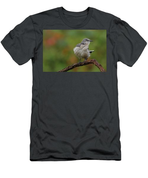Mocking Bird Perched In The Wind Men's T-Shirt (Athletic Fit)