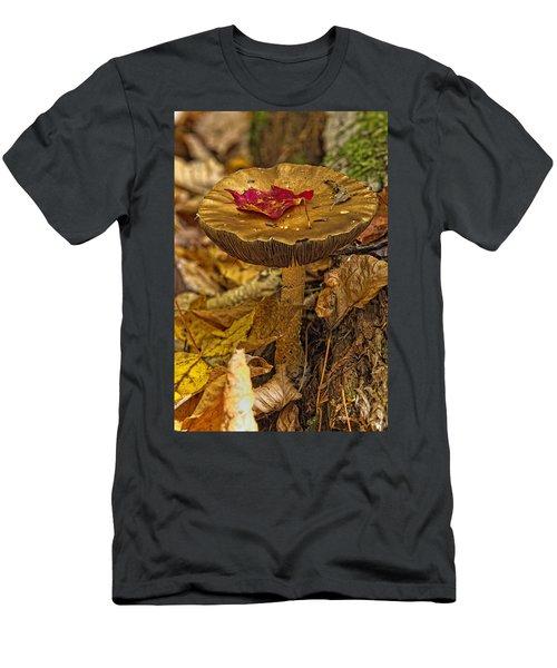 Mushroom With Leaf On It, Algonquin Men's T-Shirt (Athletic Fit)