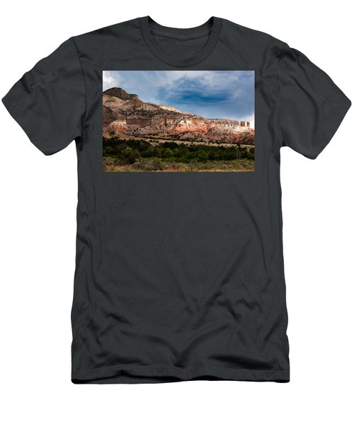 Nature's Paintbrush Men's T-Shirt (Athletic Fit)