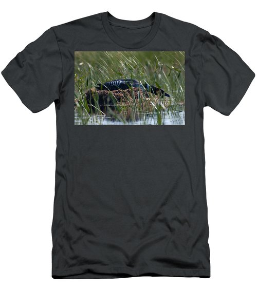 Nesting Loon Men's T-Shirt (Athletic Fit)