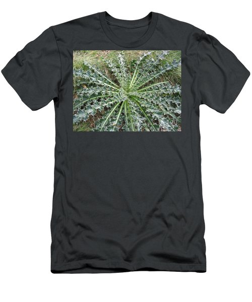Men's T-Shirt (Slim Fit) featuring the photograph October Thistle by Mark Robbins