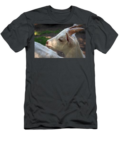 Men's T-Shirt (Slim Fit) featuring the photograph Patience Is A Virtue by Kay Novy