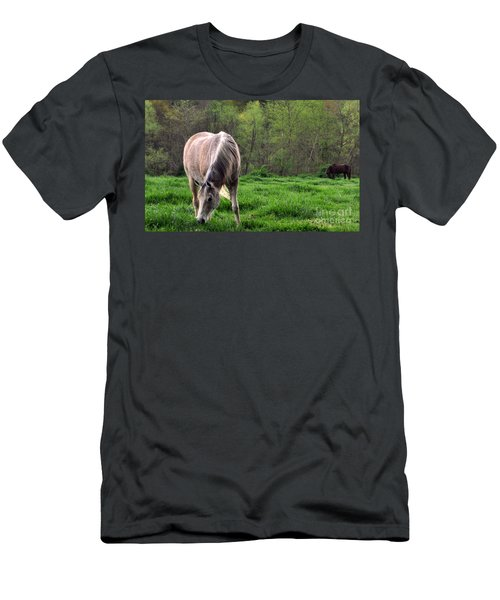 Peaceful Pasture Men's T-Shirt (Athletic Fit)