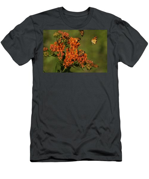 Pearly Crescentpot Butterflies Landing On Butterfly Milkweed Men's T-Shirt (Athletic Fit)