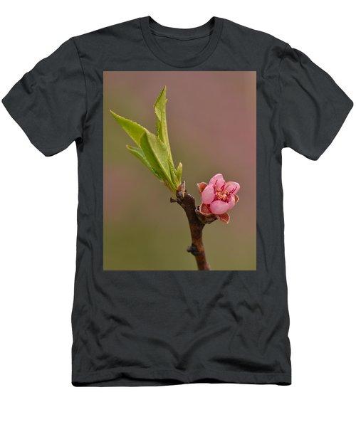 Petite Peach Men's T-Shirt (Athletic Fit)
