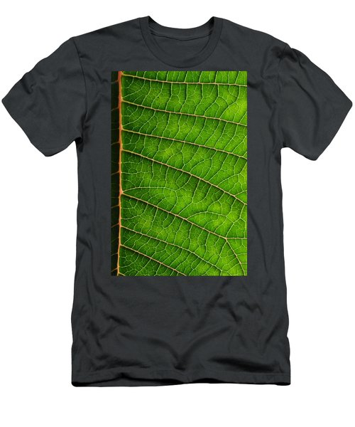 Poinsettia Leaf IIi Men's T-Shirt (Athletic Fit)