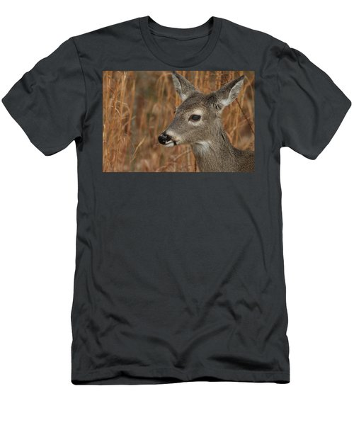 Portrait Of  Browsing Deer Men's T-Shirt (Athletic Fit)