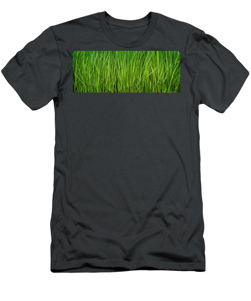 Prairie Grass Panorama Men's T-Shirt (Athletic Fit)