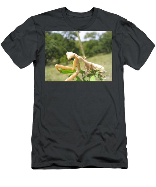 Preying Mantis Men's T-Shirt (Athletic Fit)