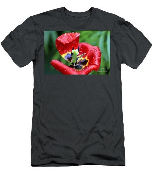 Rain Kissed Men's T-Shirt (Athletic Fit)