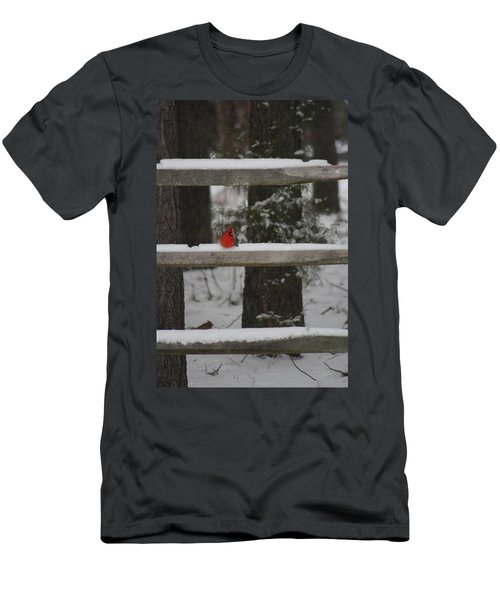 Men's T-Shirt (Slim Fit) featuring the photograph Red Bird by Stacy C Bottoms