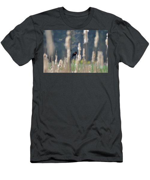 Redwinged Blackbird Men's T-Shirt (Athletic Fit)