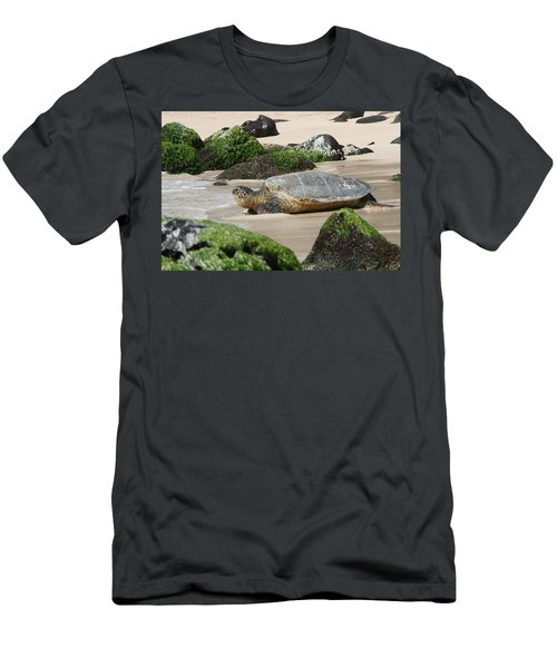 Sea Turtle 1 Men's T-Shirt (Athletic Fit)