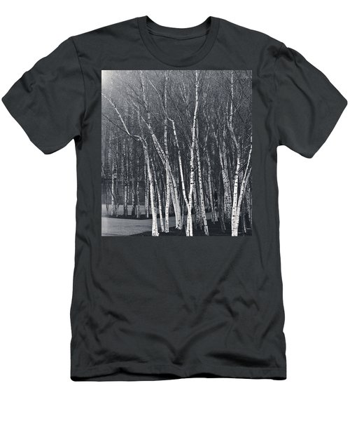 Silver Trees Men's T-Shirt (Athletic Fit)