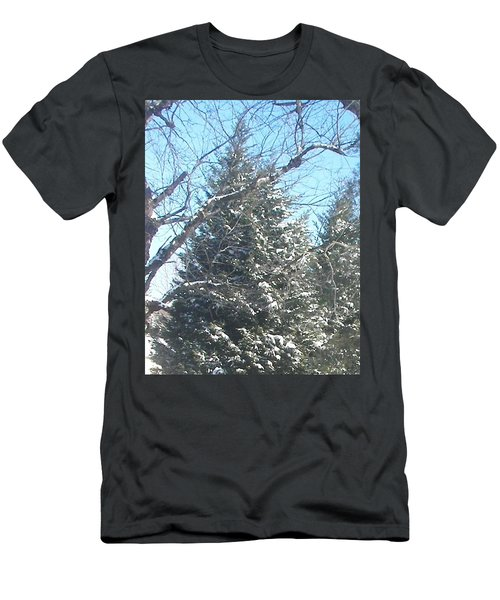 Men's T-Shirt (Slim Fit) featuring the photograph Snow Sprinkled Pine by Pamela Hyde Wilson