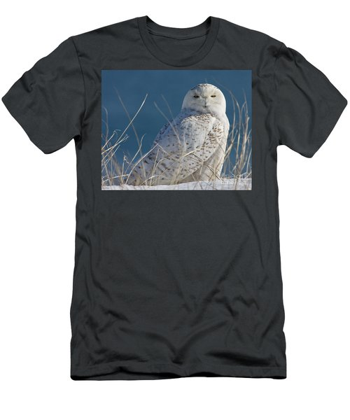 Snowy Owl Profile Men's T-Shirt (Athletic Fit)