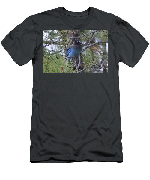 Men's T-Shirt (Athletic Fit) featuring the photograph Stellar's Jay In Profile by Dorrene BrownButterfield