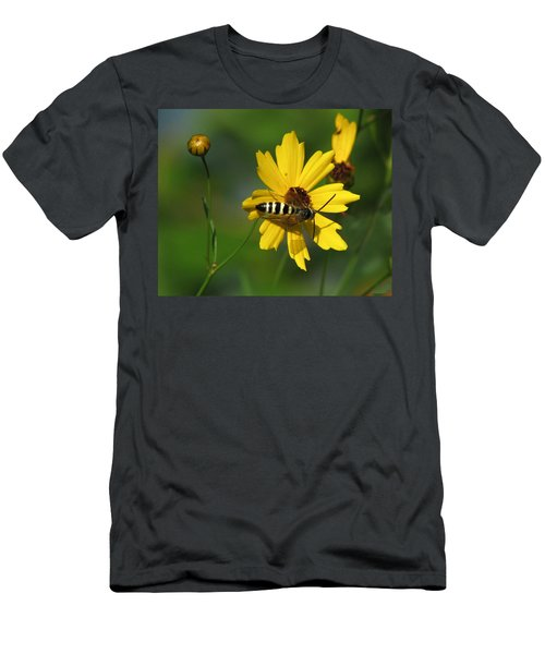 Striped Bee On Wildflower Men's T-Shirt (Athletic Fit)