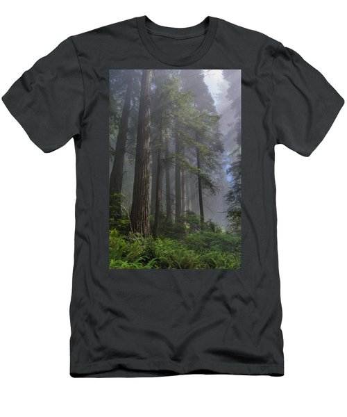 Sun Breaking On Redwoods Men's T-Shirt (Athletic Fit)