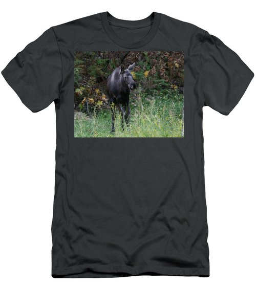 Men's T-Shirt (Slim Fit) featuring the photograph Sweet Face by Doug Lloyd