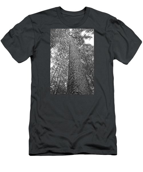 Men's T-Shirt (Slim Fit) featuring the photograph Tall Tree With Sunshine by Susan Leggett