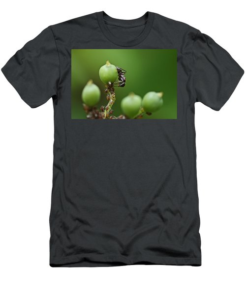 Tending The Herd Men's T-Shirt (Athletic Fit)