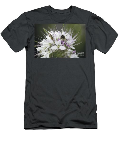 The Beetle And The Bee Men's T-Shirt (Athletic Fit)