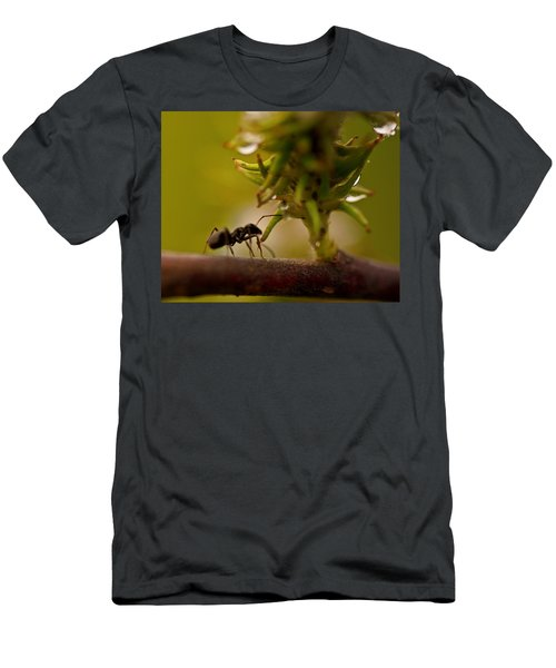 The Harvester Men's T-Shirt (Athletic Fit)