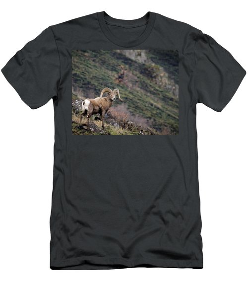 Men's T-Shirt (Slim Fit) featuring the photograph The Overlook by Steve McKinzie