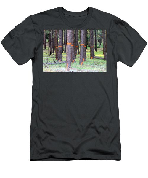 Timber Marking Men's T-Shirt (Slim Fit) by Pamela Walrath