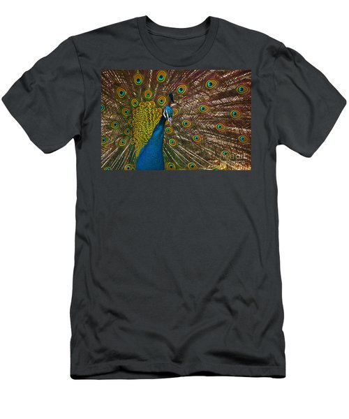 Turquoise And Gold Wonder Men's T-Shirt (Athletic Fit)