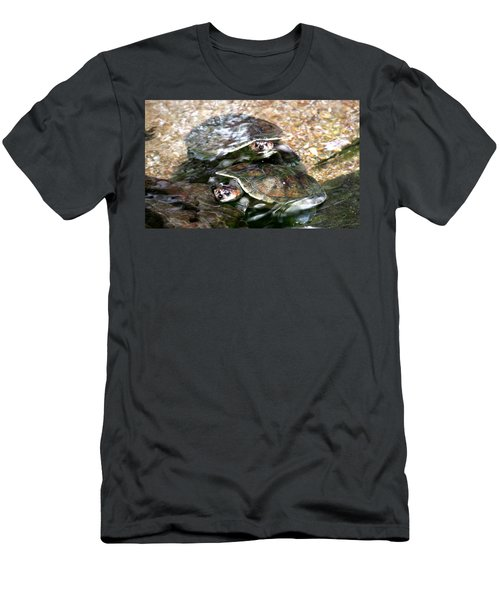 Turtle Two Turtle Love Men's T-Shirt (Athletic Fit)