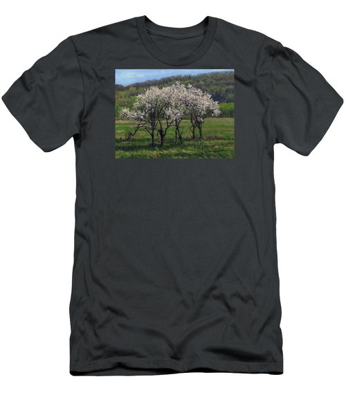 Valley Plum Thicket Men's T-Shirt (Slim Fit) by Bruce Morrison