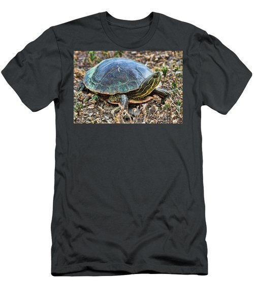 Western Painted Turtle Ll Men's T-Shirt (Athletic Fit)
