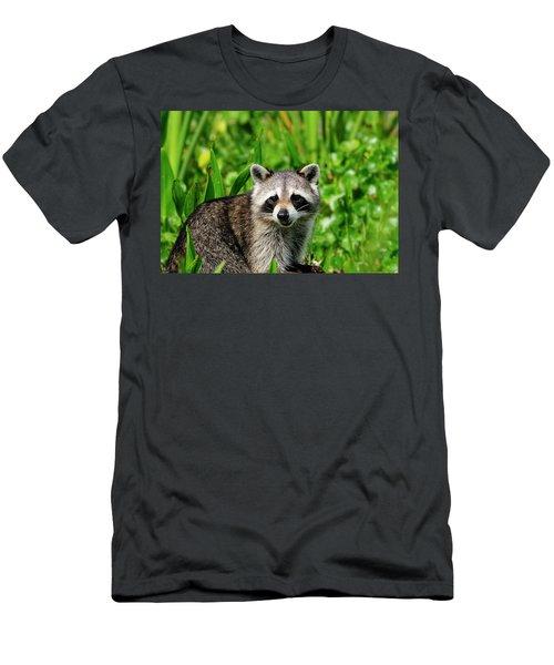 Wetlands Racoon Bandit Men's T-Shirt (Athletic Fit)