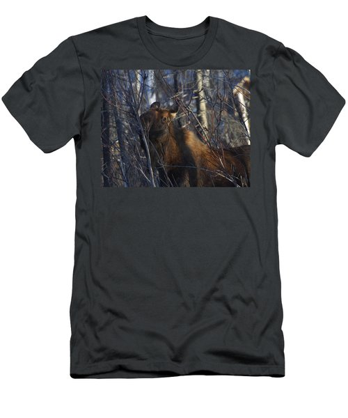 Men's T-Shirt (Slim Fit) featuring the photograph Winter Food by Doug Lloyd