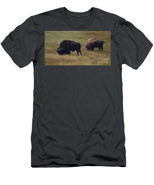 Wyoming Buffalo Men's T-Shirt (Athletic Fit)