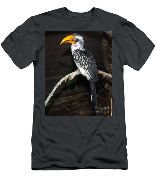 Men's T-Shirt (Slim Fit) featuring the photograph Yellow-billed Hornbill by Kathy  White